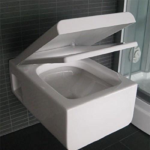 wand wc mit nano beschichtung toilette wc sitz aus duroplast mit. Black Bedroom Furniture Sets. Home Design Ideas